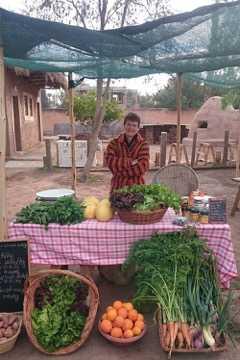 Marchés bio, de la ferme à l'assiette