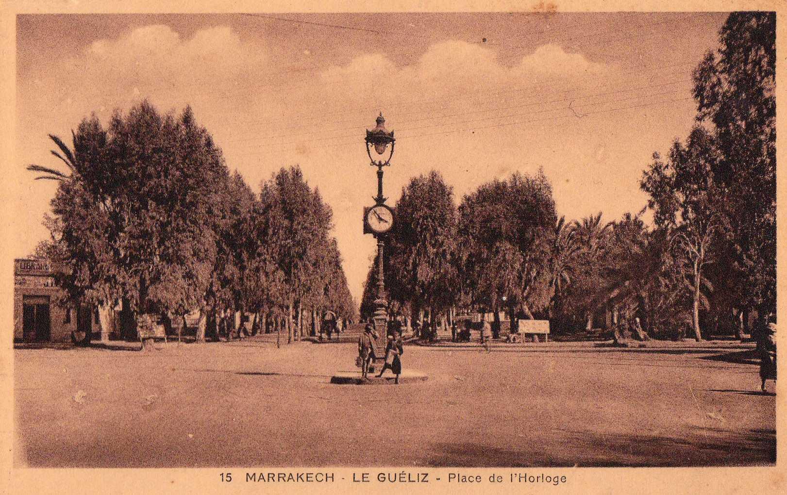 SOS arbres de Marrakech en péril