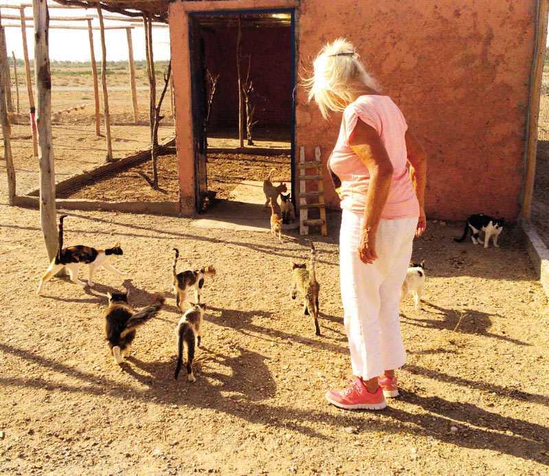 Le paradis pour animaux d'Helga